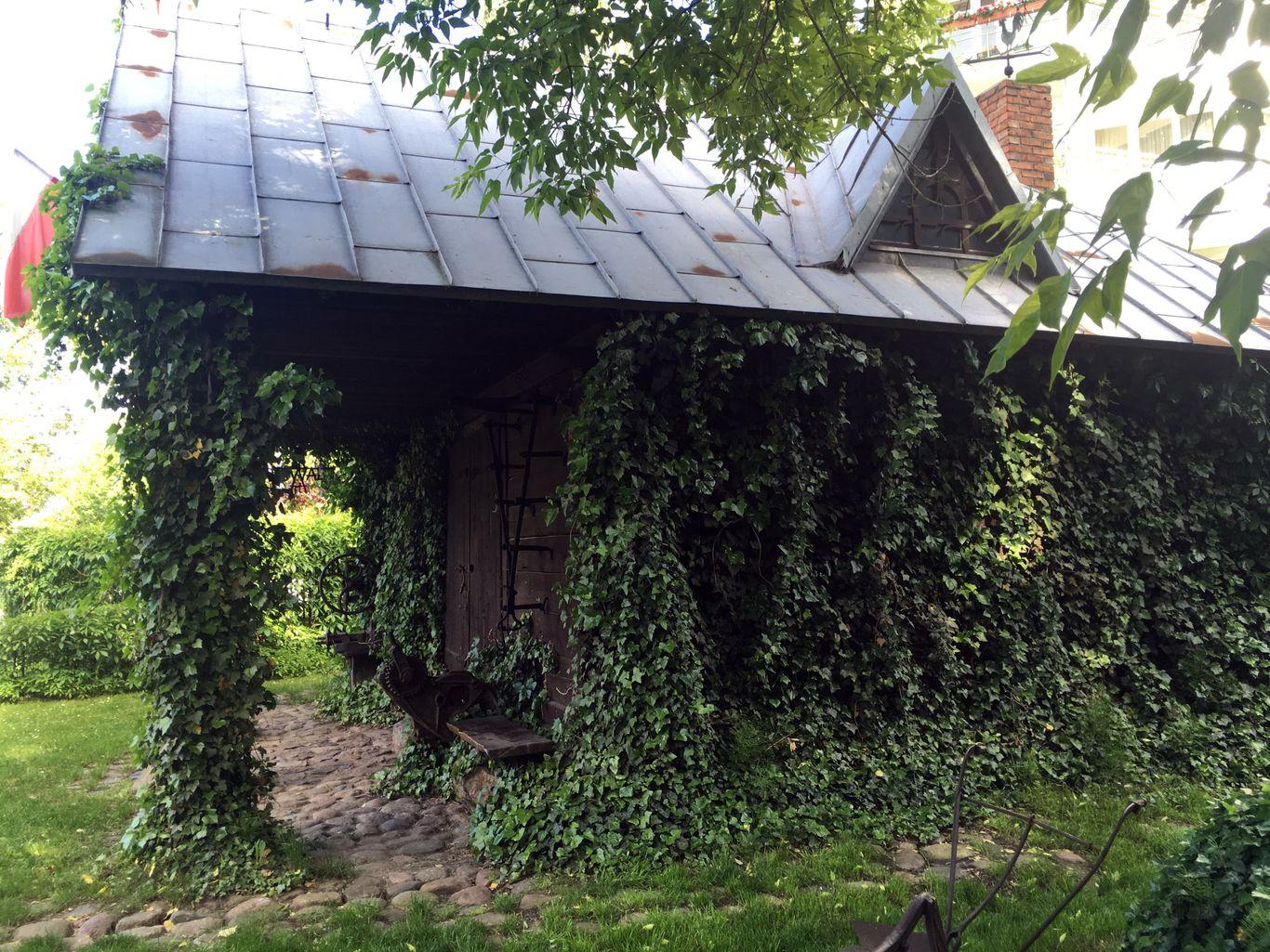 Muzeum kowalstwa w Warszawie - Dom obrośnięty bluszczem