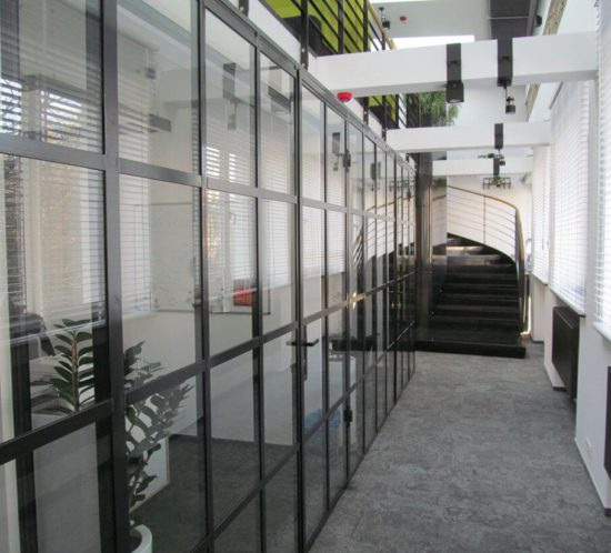 EIP - Industrial Doors and Loft Walls System from Glass Constructional Steel painted in RAL 7021 color